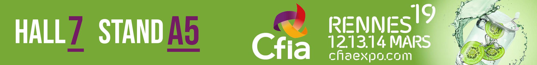 CFIA-2019-ARPEGE-MASTER-K